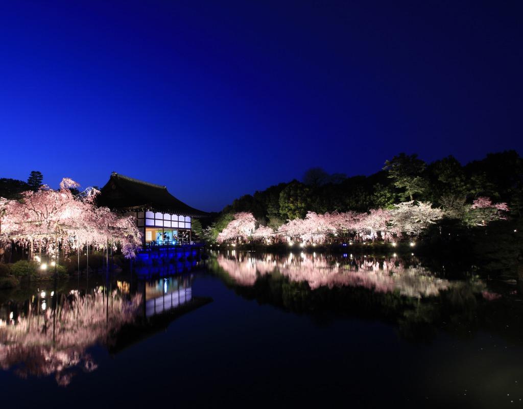 Benishidare Concert in Heianjingu 2019